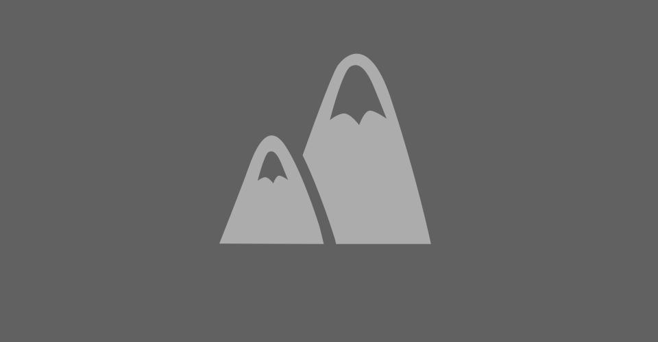 Dino plugin tmp